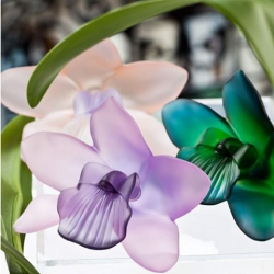 crystal_orchid_