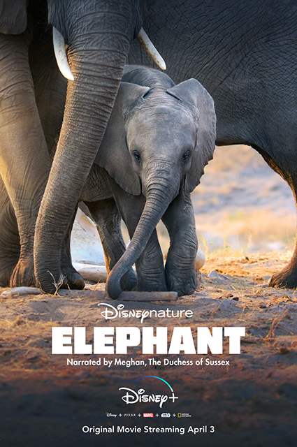 Афиша фильма Disneynature's Elephant