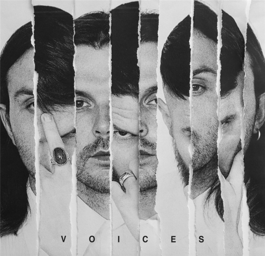 HURTS. VOICES