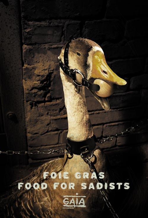 Foie Gras, please