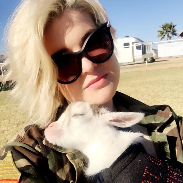 Thank you so much @azgoatyoga!!! Yoga  goats  1 of the best things I have ever done in my life. I fell so I m love with this little guy I almost cried when I had to give him back. April if you change your mind you know how to find me and I would give Bugsy the best life/home. #WinkWink